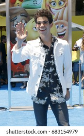 """LOS ANGELES - JUL 23:  Cameron Boyce at """"The Emoji Movie"""" Premiere at the Village Theater on July 23, 2017 in Westwood, CA"""