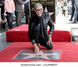 LOS ANGELES - JUN 14:  Jeff Goldblum at the ceremony honoring Jeff Goldblum with a Star on the Hollywood Walk of Fame on June 14, 2018 in Los Angeles, CA