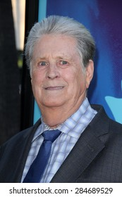 """LOS ANGELES - JUN 2:  Brian Wilson at the """"Love & Mercy"""" Los Angeles Premiere at the Academy of Motion Picture Arts & Sciences on June 2, 2015 in Los Angeles, CA"""