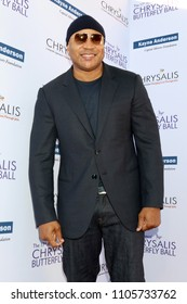 LOS ANGELES - JUN 2:  LL Cool J at the 17th Annual Chrysalis Butterfly Ball at Private Residence on June 2, 2018 in Los Angeles, CA