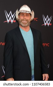 LOS ANGELES - JUN 6:  Shawn Michaels at the WWE For Your Consideration Event at the TV Academy Saban Media Center on June 6, 2018 in North Hollywood, CA