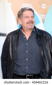 LOS ANGELES - JUN 8:  John Wells at the Animal Kingdom Premiere Screening at the The Rose Room on June 8, 2016 in Venice Beach, CA