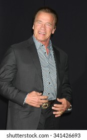 """LOS ANGELES - NOV 19:  Arnold Schwarzenegger at the """"Creed"""" Los Angeles Premiere at the Village Theater on November 19, 2015 in Westwood, CA"""