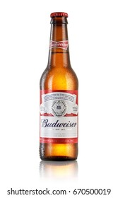 LOS ANGELES ,USA - JULY 3, 2017 : Photo of bottle of Budweiser beer on white background with reflection, an American lager first introduced in 1876