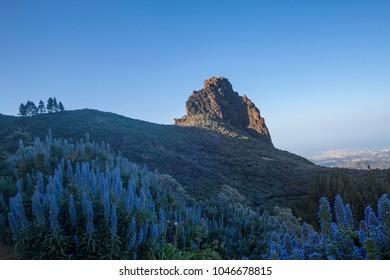 Los Marteles, Gran Canaria