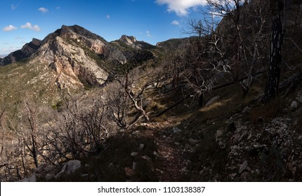 Los Ports mountains. Horta of San Joan. Spain. Burnt mountain