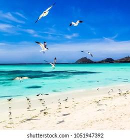 Los Roques, wonderful archipelago in Venezuela. Paradise islands.