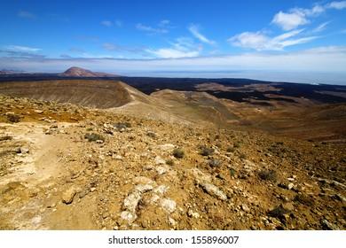 in los volcanes volcanic timanfaya  rock stone sky  hill and summer  lanzarote spain plant flower bush