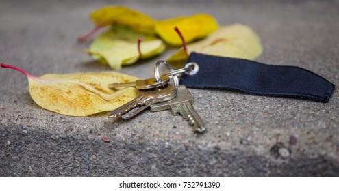 a lost bunch of keys lies outside on a street