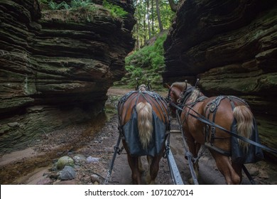 The Lost Canyon is a Hidden Gem of the Wisconsin Dells with Horse Rides through a Scenic Gorge
