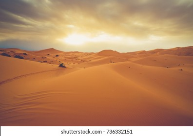 lost in the desert of sahara, global warming concept. Lonely sand dunes under dramatic evening sunset sky at drought desert landscape,