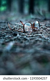 Lost glasses on ground of pine forest.