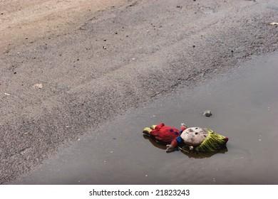 Lost rag doll