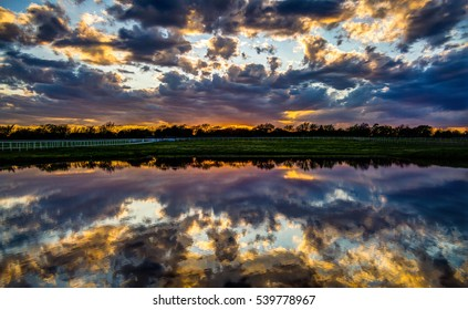 Lost in Reflection