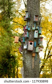 Lots of colorful nesting boxes on a tree