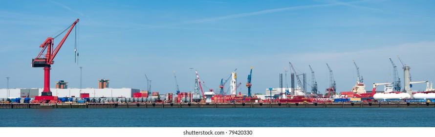 lots of cranes in rotterdam harbor