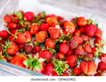 A lots of fresh organic strawberries in glass bowl. Close up