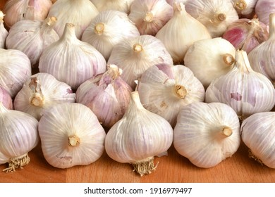 Lots of garlic bulbs on wooden table