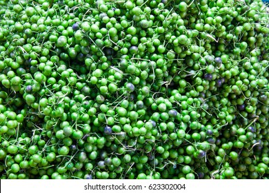 Lots of green leunca traditional food background