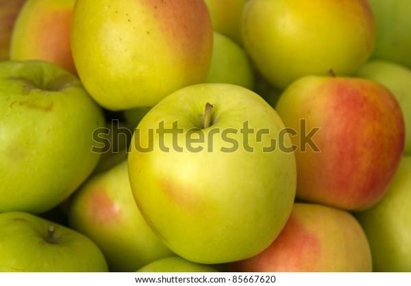 Lots of Green ripe apples
