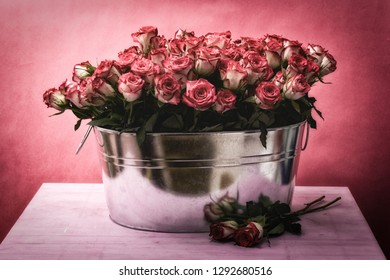 lots of roses in a bucket well suited for the valentines day