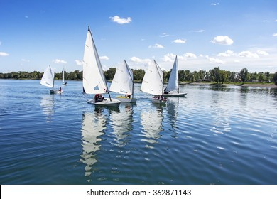 Lots of Small white boats sailing on the lake