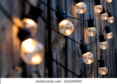 Lots of warm LED light bulbs on old wooden background in the garden, copyspace, outdoor lighting deciration concept