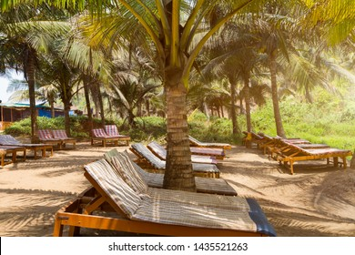 Lots of wooden covered sun chairs under shadow of coconut trees. Nobody. Holiday summer concept. Toned with sunlight.
