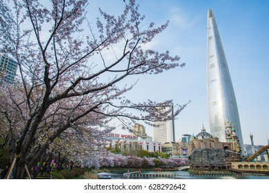 Lotte World Tower during cherry blossom in Seoul. 12 ARP 2017.