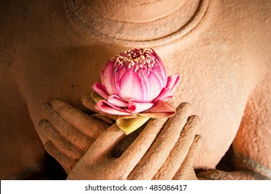 500 Buddha Lotus Pictures Royalty Free Images Stock Photos And