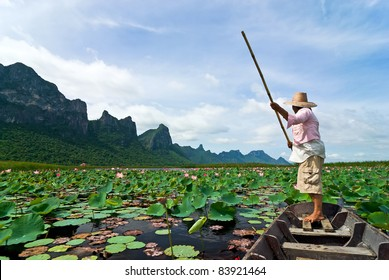 lotus lake at khao samroiyod national park, thailand