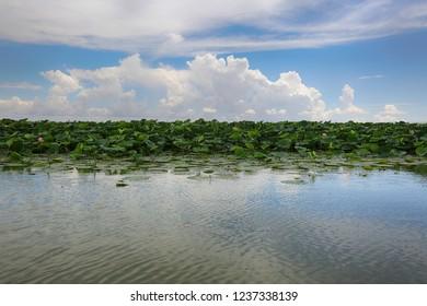 Lotus Lake, sky and clouds