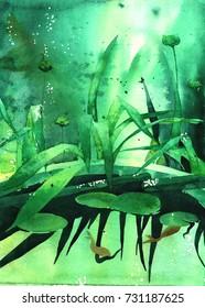 Lotus pond, Botanical set watercolor paint