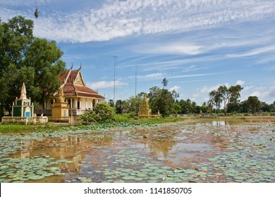Lotus Pond in Kampot, Cambodia