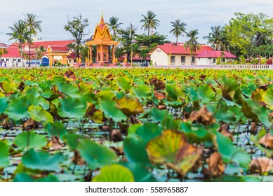 The Lotus pond in Kampot, Cambodia. Contemporary park recreation area in the city center of Kampot. Green leaves and Buddhist architecture and modern buildings with coconut trees in the background