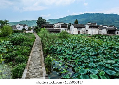 Lotus pond and vernacular Hui architecture in Chengkan Bagua village, south Anhui Province, China
