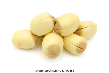 lotus seed isolated on the white background