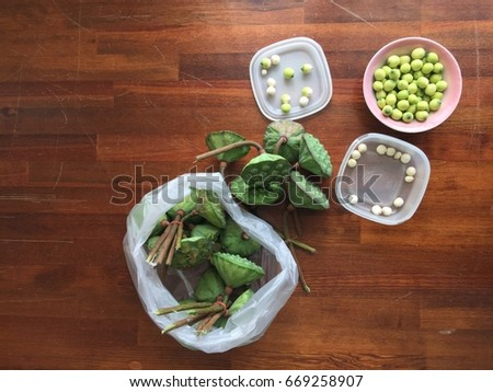 Lotus Seeds Lotus Flower Versatile Food Stock Photo Edit Now