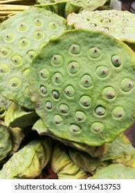 lotus seeds once of thai herb