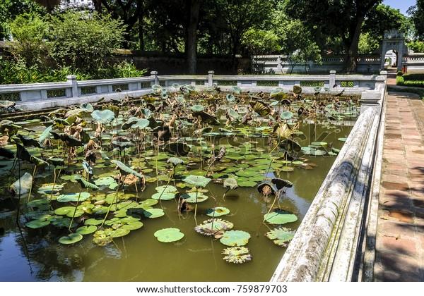 Lotuses Ponds Gardens Temple Literature Ancient Stock Photo Edit