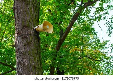 loudspeaker on the tree
