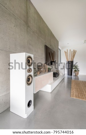 Loudspeaker Television Huge Vase Bamboo Sticks Stock Photo Edit Now