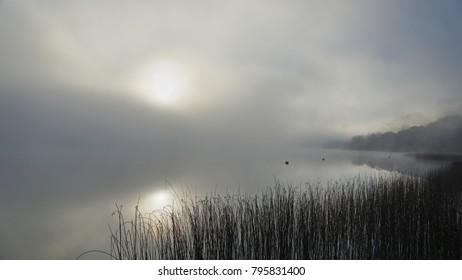 Image result for mist on Lough Derg