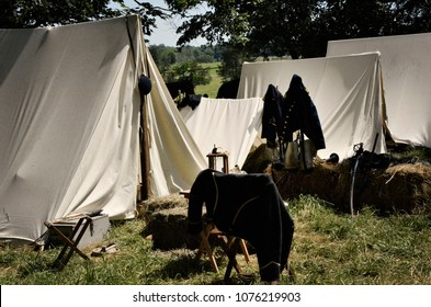 LOUISA, VA – JUNE 9, 2012: Men re-enact the Civil War Battle of Trevilian Station in Louisa, Virginia on the original site which took place June 11,12, 1864 between Union and Confederate cavalry.
