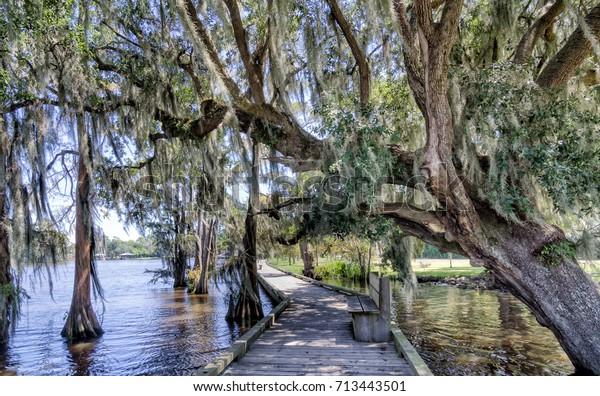 Louisiana Boardwalk Fairview Riverside State Park Stock Photo (Edit