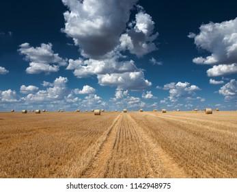 Louny – JULY 25, 2018: Bales of Hay in Field of wheat under Blue Sky with Clouds, July 25, 2018 in Louny, Czech Republic.