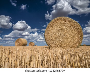 Louny – July 25, 2018: Bales of Hay in  Field of wheat under Blue Sky with Clouds, Louny – July 25, 2018, CZECH REPUBLIC