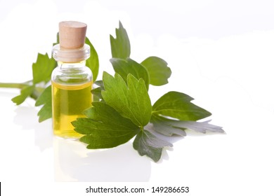 lovage herb essence homeopathy liquid