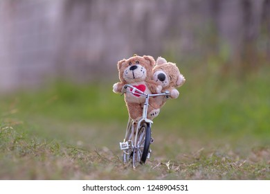 Love bear on a bicycle