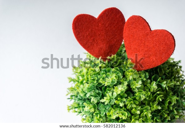 A love by hand craft and a mini green tree over white background. Love Concept.